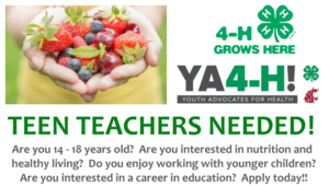 4H Youth Advocates for Health Teen Volunteer Opportunity