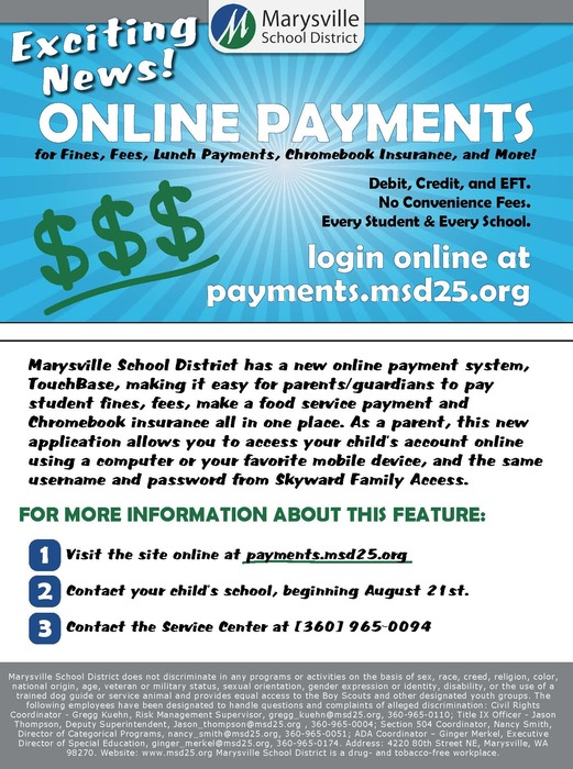 Image: Online Payment System