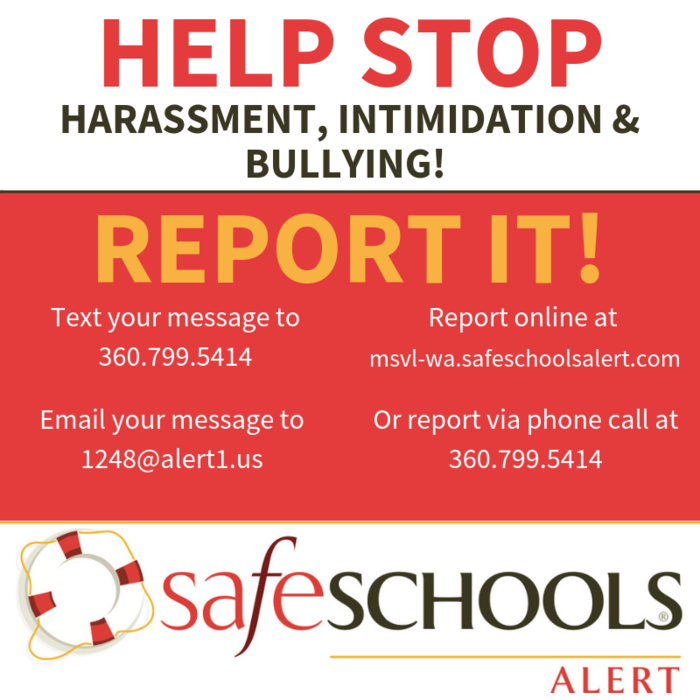 Image: Stop Bullying, Report It using Safe Schools