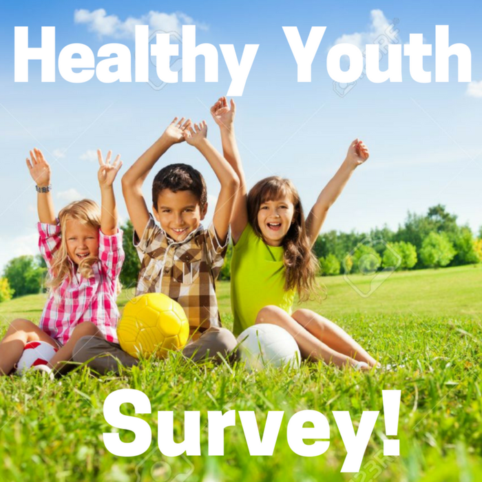 Image: Kids in Park with Healthy Youth Survey