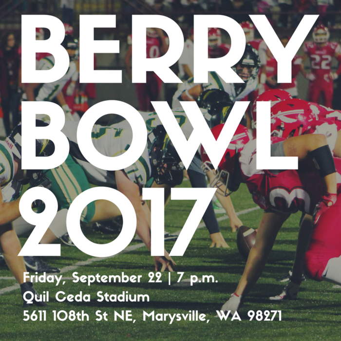Large_berry_bowl_2017_copy