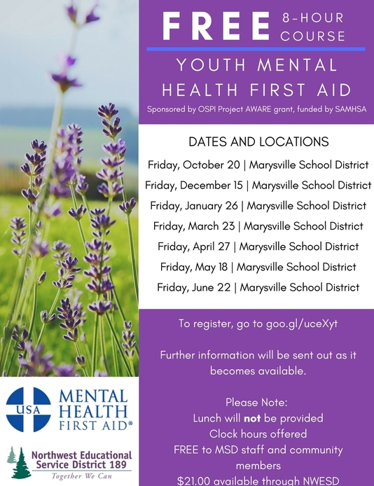 Large_youth_mental_health_first_aid